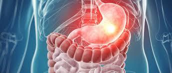 Gastroenterólogo – Universidad de Chile